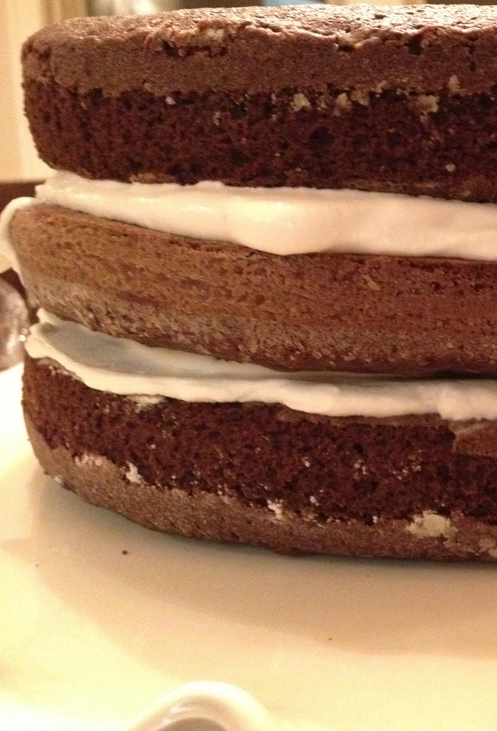 The Perfect Chocolate Cake Mccalls